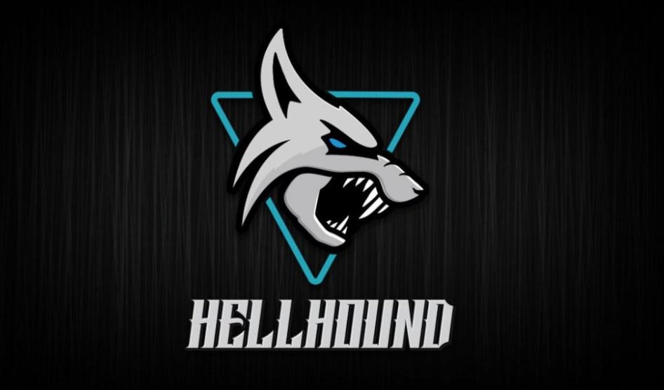 撼讯 RX 6700 XT Hellhound 显卡曝光:蓝色三风扇设计,双 8 Pin 供电