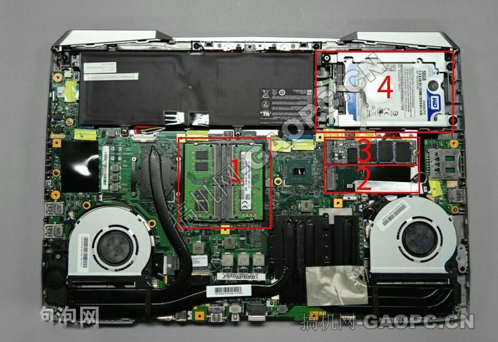 机械师 F117-S拆机-机身内部硬件排列