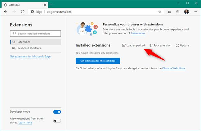 在Microsoft Edge中加载解压后的Ruffle Flash扩展