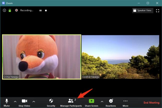 如何录制Zoom会议